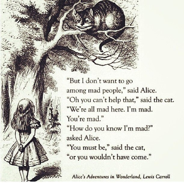 Alice and the Cheshire Cat_Alice in Wonderland